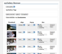 Bilderbrowser via Quicktag Button