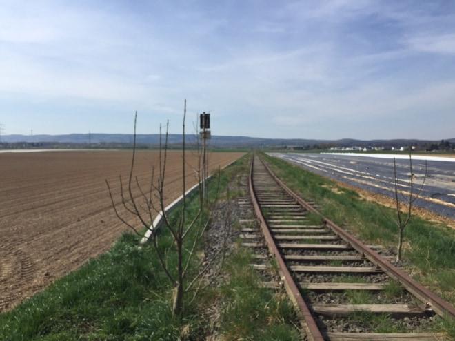 Kein Zug wird kommen