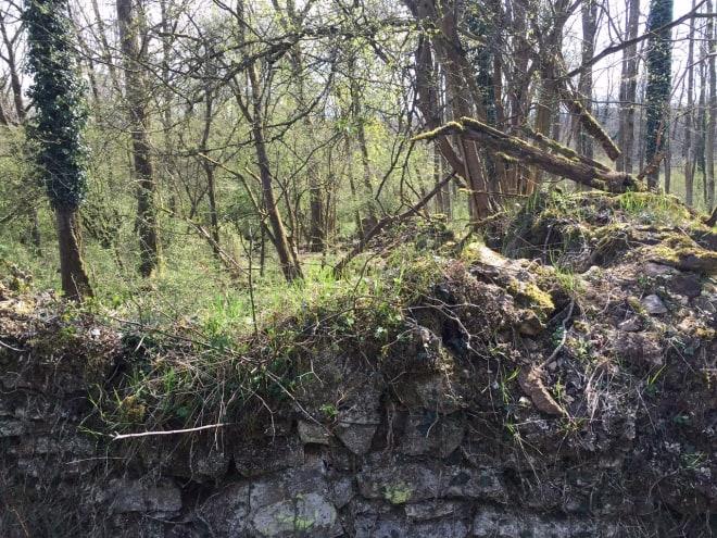 Mauerreste vom Kloster Schwarzenbroich