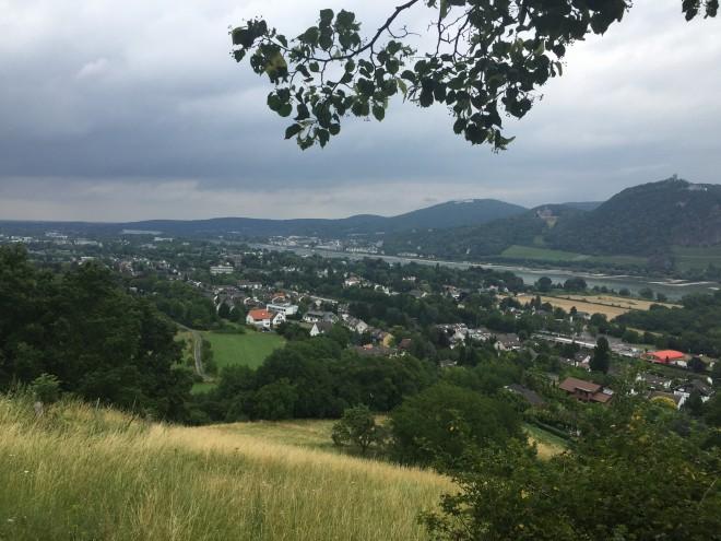 Der Rhein bei Bonn
