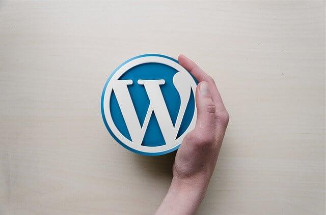 Ein Händchen bei der Auswahl des WordPress Theme