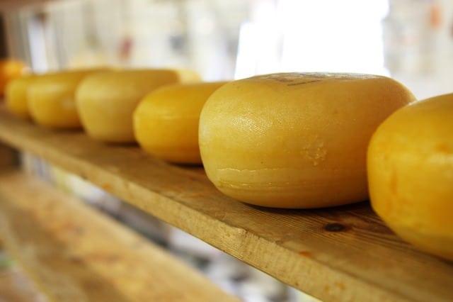 Alles Käse!