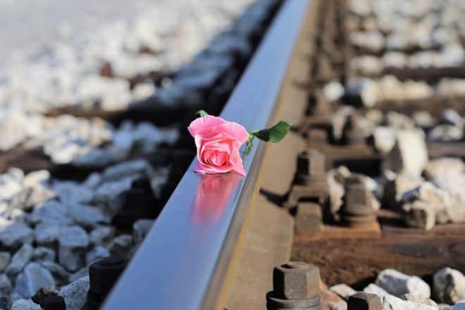 Selbstmord der SPD