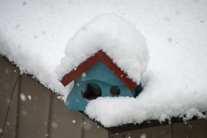 Januar 2019 mit etwas Schnee