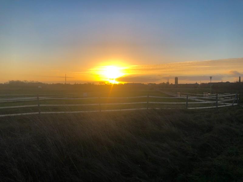 Sonnenuntergang für Andrea Nahles