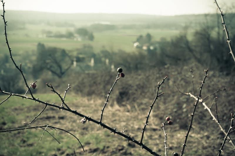 Wanderflaute im Herbst