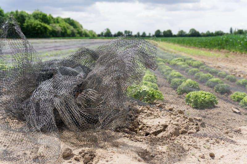 Bauernland in Bauernhand