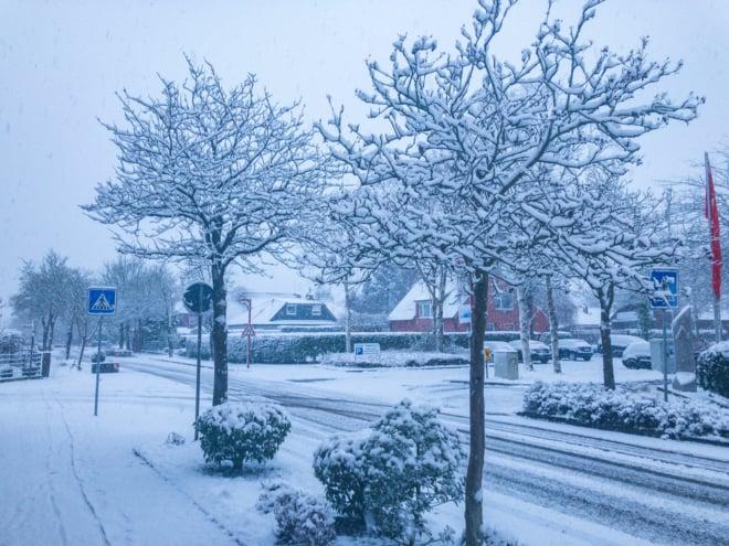 Keine Landjäger im Schnee