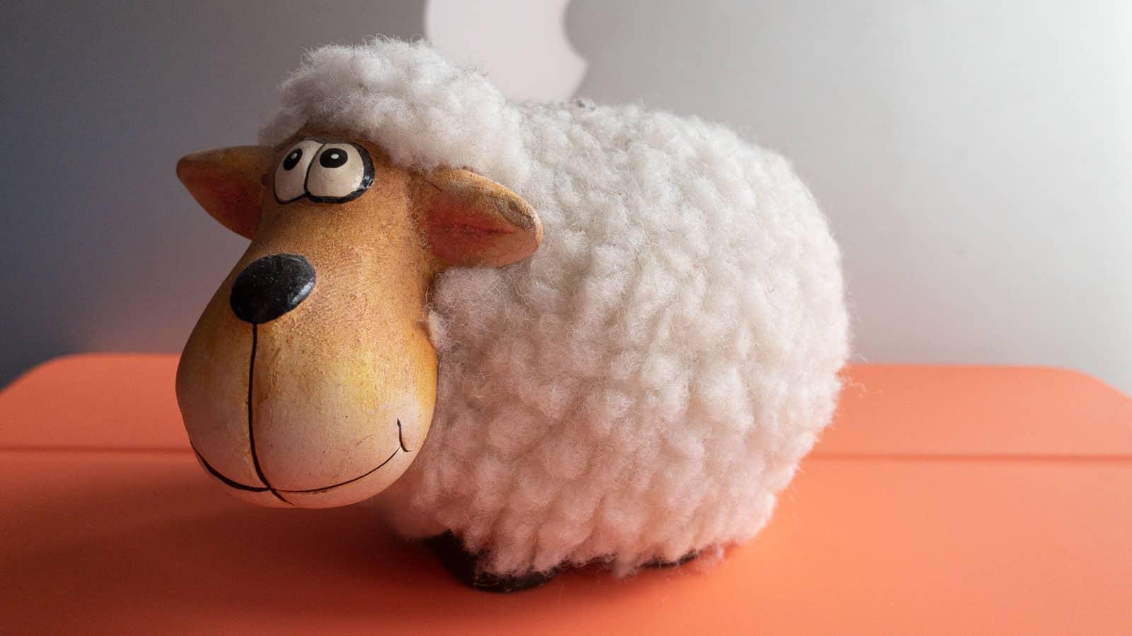 Schaf an Ostern vorbei